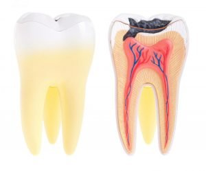 New Diagnostic Liquid Reveals Early Tooth Decay
